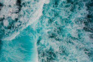 Read more about the article Giornata Mondiale degli Oceani